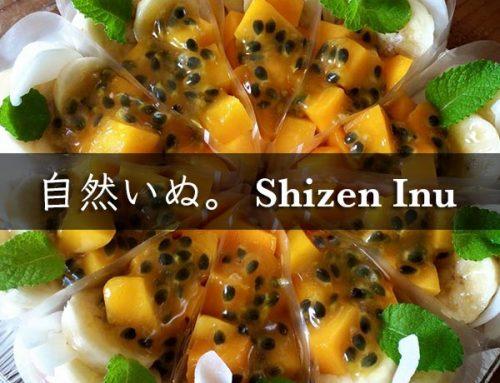 自然いぬ。Shizen Inu